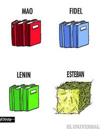 Esteban01