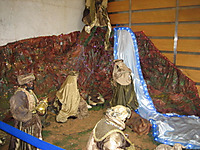 Nacimiento1101