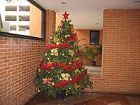 Navidad1101